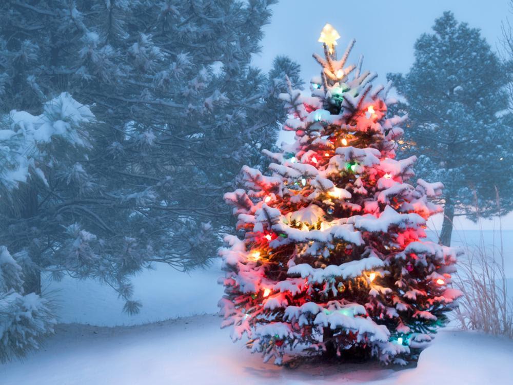 Happy Healing Holidays!